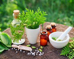 Bottles Of Homeopathic Globules, Thuja Occidentalis, Plantago Ma