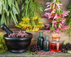 healing-from-vaccine-injuries-through-homeopathy