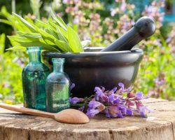 health-wellness_balanced-living_wellness-therapies_homeopathic-medicine_1440x1080_469956526-1024x768
